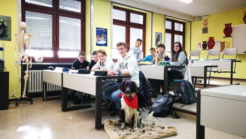 Realschule Kötzting